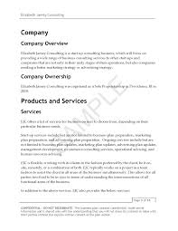 modeling agency business plan legal forms and templates clothing