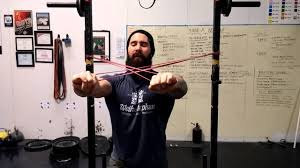 how to build killer triceps with modified tate press and bands