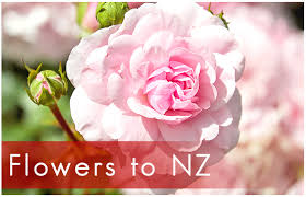 Flowers And Gift Baskets Delivery - gift baskets nz gift hampers and flowers free delivery about