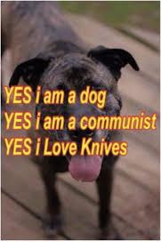 Yes This Is Dog Meme - yes jam a dog yes i am a communist yes i love knives dogs meme