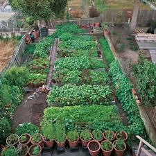 Houston Urban Gardeners - 338 best urban gardening images on pinterest gardening garden