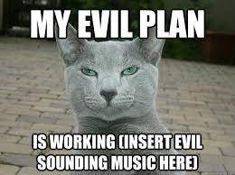 Evil Cat Meme - my evil plan is working insert evil sounding music here evil