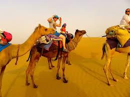 thar desert camel safari in thar desert in jaisalmer safari in jaisalmer