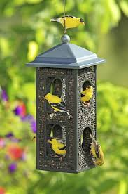 feeders for all birds u0026 blooms magazine