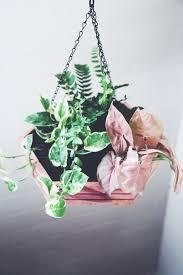 diy hexagon hanging planter the jungalowthe jungalow