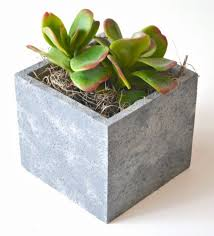 succulent planters with folkart painted finishes one artsy mama
