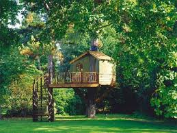 dads great tips for building your child a treehouse