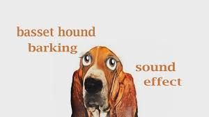 How A Basset Hound Barking Sound Effect Animation