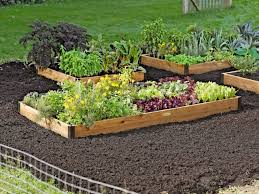 raised bed vegetable garden design on alacatihomenet pictures beds