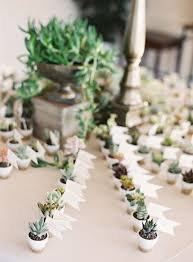 succulent wedding favors mini succulent wedding favors via photography justin demutiis