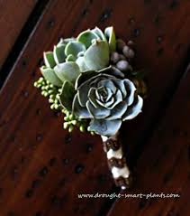 succulent bouquet succulent wedding bouquet flowers that aren t flowers at all
