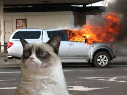 Meme Generator Grumpy Cat - grumpy cat car on fire blank template imgflip