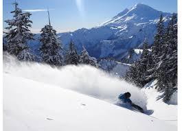 winterstick snowboards original snowsurf company est 1972