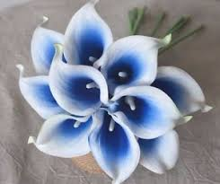 wedding flowers royal blue 10 royal blue picasso calla lilies real touch wedding flowers