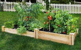 good vegetable garden design best 10 vegetable garden layouts
