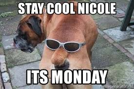 Stay Cool Meme - stay cool nicole its monday funny dog butt meme generator