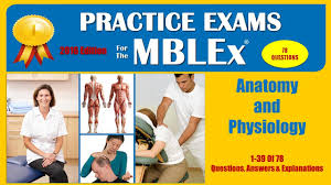 Anatomy And Physiology Midterm Exam Biol S Ch Practice Midterm Exam 1 Anatomy And Physiology Quiz With