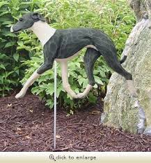 22 best greyhounds in the garden images on greyhound