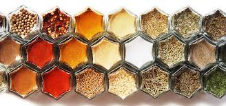 Magnetic Home Design Kit by Magnetic Spice Racks And Organic Spice Kits Gneiss Spice