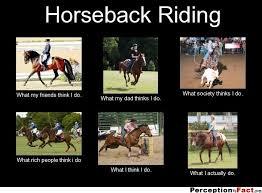 Horse Riding Meme - horseback riding what i think i do google search j o k e s