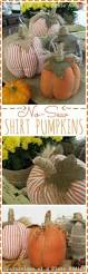 Diy Crafts Halloween by 63 Best Fall Crafts Images On Pinterest Fall Crafts Halloween