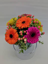 gerbera daisy arrangement in winnetka il victor hlavacek