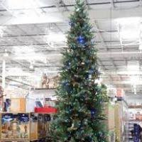 12 ft pre lit tree costco decore