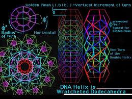 golden ratio dna spiral fractals dna golden ratio dan winter must watch youtube