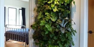 10 stylish indoor plant displays u2014 led grow lights together with
