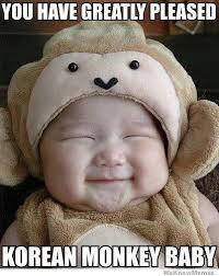 Baby Monkey Meme - you have greatly pleased korean monkey baby weknowmemes