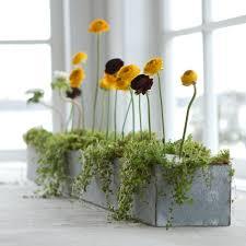 10 easy pieces galvanized trough planters gardenista