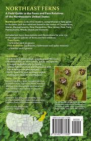 native plants of the northeast northeast ferns a field guide to the ferns and fern relatives of