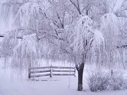 85 entries in winter backgrounds for desktop group