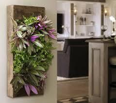 plante de cuisine 30 unique table de cuisine avec plante interieur fleurie