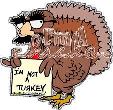 im a chicken not a turkey gif gifs thanksgiving