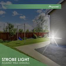Which Flashing Light Tells You To Enter A River Lock Amazon Com Aspectek Yard Sentinel Strobe Ultrasonic Outdoor