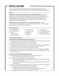 curriculum vitae sles for experienced accountants office humor sle combination resume format awesome functional resume