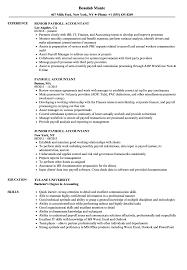 accounting resume exles payroll accountant resume sles velvet