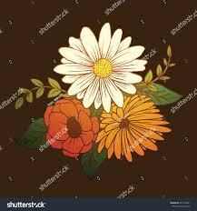 vector image beautiful bouquet different types stock vector