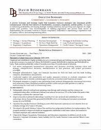Resume Html Cfo Resume Example Sample Resume123
