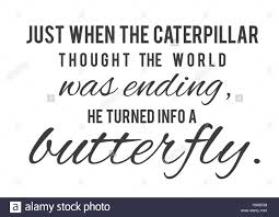 just when the caterpillar thought the world was ending he turned