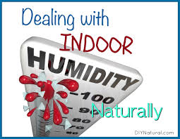 dealing with indoor humidity in house naturally