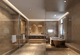Bathroom Ceiling Ideas Best Type Of Ceiling For Bathroom Www Lightneasy Net