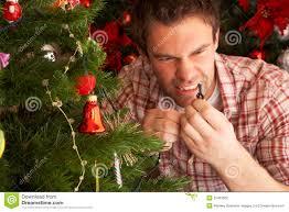 How To Fix Christmas Tree Lights Troubleshooting Christmas Tree Lights Rainforest Islands Ferry