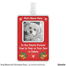 best 25 cat memorial ideas on loss of in loving