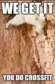 The Rock Gym Memes - rock climbing memes home facebook