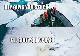 Polar Bear Meme - good guy polar bear meme weknowmemes