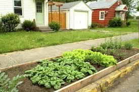Sidewalk Garden Ideas Hell Garden Plan Tips For Creating Parking Vegetable