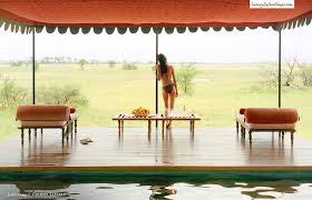 jacks camp botswana luxury safari camps