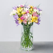 flowers bouquet fragrant flowers bouquet fragrant freesias bouquet by post